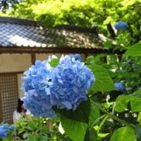 北鎌倉散策^^