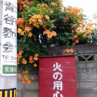 青谷(鳥取県)あおや