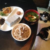 天栄村の黒ごま豆腐
