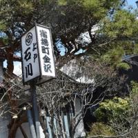 245. 金沢(かざわ)の枡形   岩手県一関市金沢