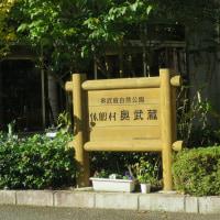 休暇村 奥武蔵