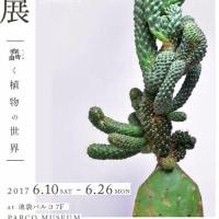 叢 - Qusamura 展 at パルコミュージアム