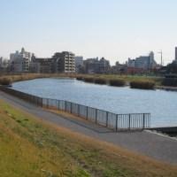 旧中川から荒川河口コース