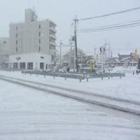 大雪の日!