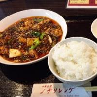 麻婆豆腐とお花見
