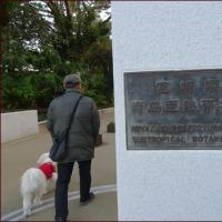 宮交ボタニックガーデン青島<南九州感動の旅(11)>