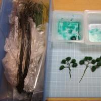 「柘植の木」を作って