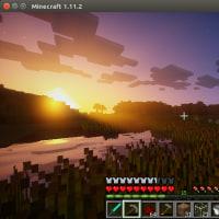 ubuntu16.04マシンにRX 470を導入してマイクラを動かすまでの旅