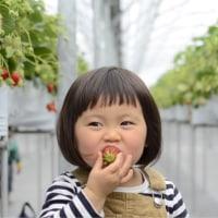 3歳  お給食スタート!