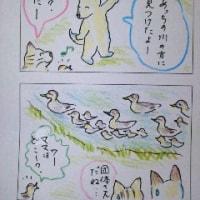まるココの日々(58)
