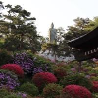 ぶらり旅・塩船観音寺つつじまつり②(東京都青梅市)