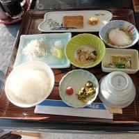 日本土佐錦魚保存会 総会