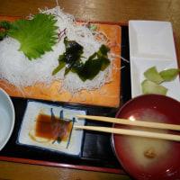 横浜の黄葉