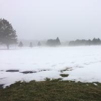 霧の火曜日&マグカップ収集(山岳地帯編)