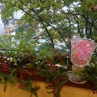 秋の花party