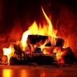 デンマーク: 暖炉が問題?