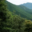 志引峠から後山~船木山周回