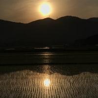 田んぼからの日没前の加波山