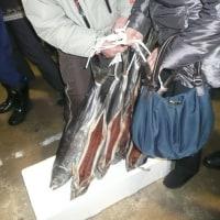 塩引き鮭・塩引き鮭