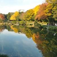 フレンドパーク・こさのぼ・・清澄庭園