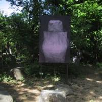 自然の中の絵画(3)