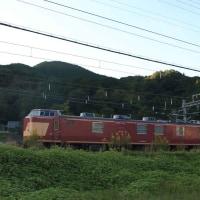 レアな車両 『電気検測試験車  クモヤ443-2 + クモヤ442-2』 ・ JR和歌山線(奈良県)
