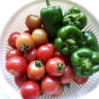 野菜と果実と花と…