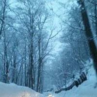 まだ冬の風景