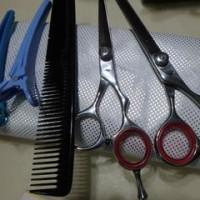 マレーシア在住で「髪のカット」はどうする。素人ながらハサミも買ってある。今回日本製「電動髪切りバリカン」壊れ、新品を買った。重宝しているの巻。