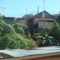 コスタリカ再訪(145)田舎町でタマレス(tamales) 購入