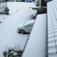 雪が降ってきました、心配です、いろいろ…