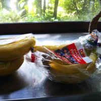 バナナの保存(バリバリ+プチプチ)