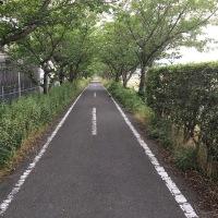 熊本・佐賀へ行って来た・後編