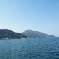 ピンクの山茶花と宇和島湾と宇和島湾入口の風景