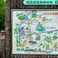 〇忍城からさきたま風土記の丘    2017.5.10.(水) 小雨/曇り