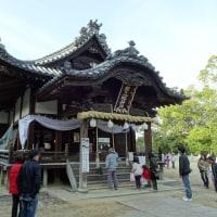 朝日八幡神社 春祭り