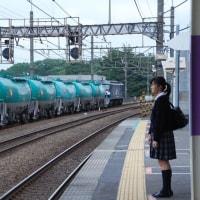 直流電気機関車 EF210-122【武蔵野線:新座駅】 2017.5.15(10)撮り鉄 車両鉄