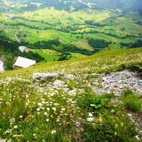 グレックシュタインヒュッテトレッキング―スイス