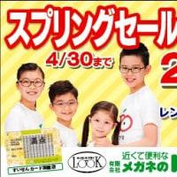 眼鏡橋華子の見立て(コミック)