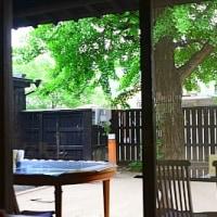 味噌の丸高蔵 「みそ茶屋 千の水」