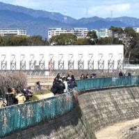 千里川原田橋から見た進入機。此処からだと側面を上手く捉えられる。焦点距離を見て見た。