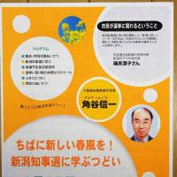 千葉県知事選挙に、角谷信一さんが出馬表明