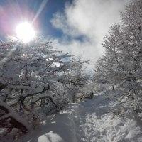 入笠山で雪遊び