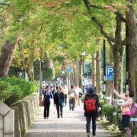 金沢の秋2016-14 石川四高記記念館、四高記念公園