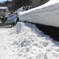 雪解けはまだまだ先
