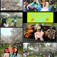 桜🌸満開❕😊