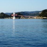 竜串海岸でのんびりと釣り