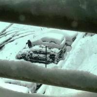 大雪警報 (追記しました)
