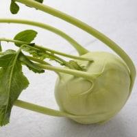 地中海沿岸の野菜コールラビ