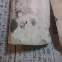 今2月6日。年末に買った江戸屋の餅発見!
